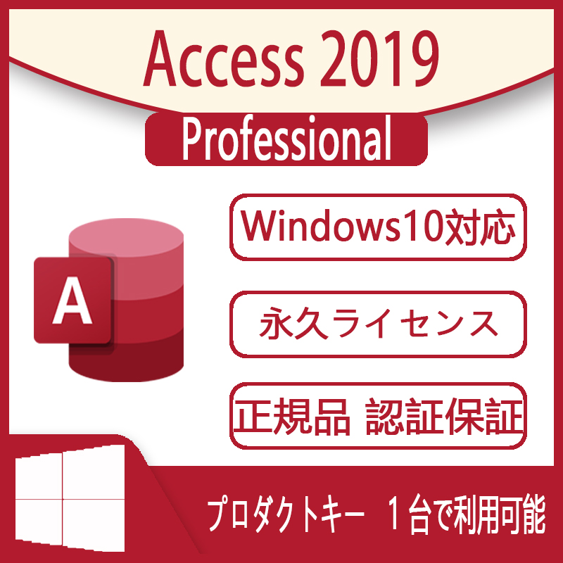 Access 2019 Professional